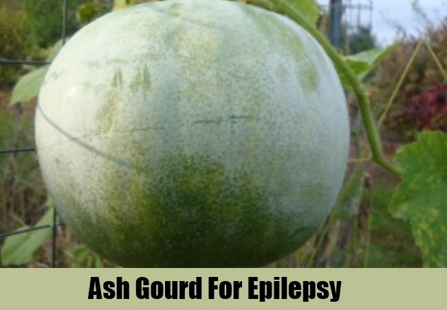 Ash Gourd For Epilepsy