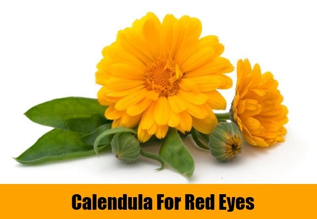 Calendula For Red Eyes