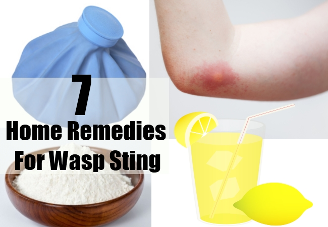 Home Remedies For Wasp Sting