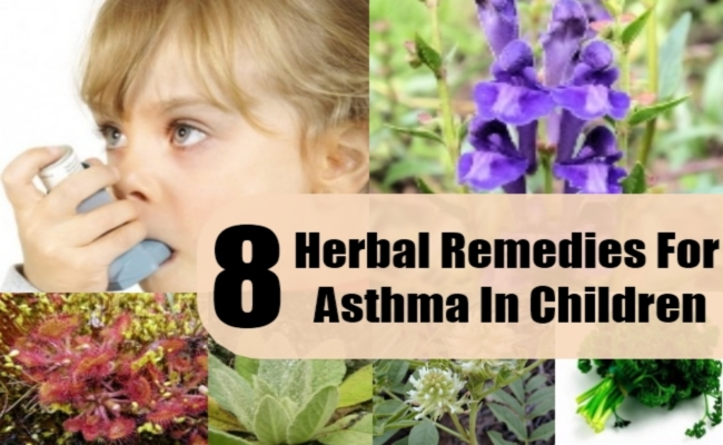 Herbal Remedies For Asthma In Children