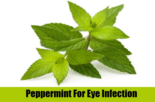 Peppermint For Eye Infection